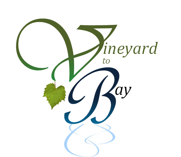Vineyard to Bay 25K